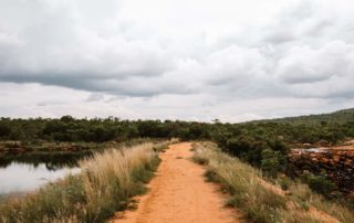 Mangweni Private Game Reserve - Game Drives5