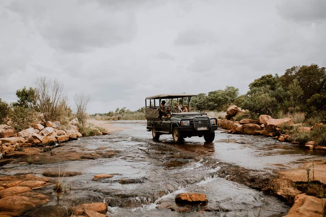 Mangweni Private Game Reserve - Game Drives8