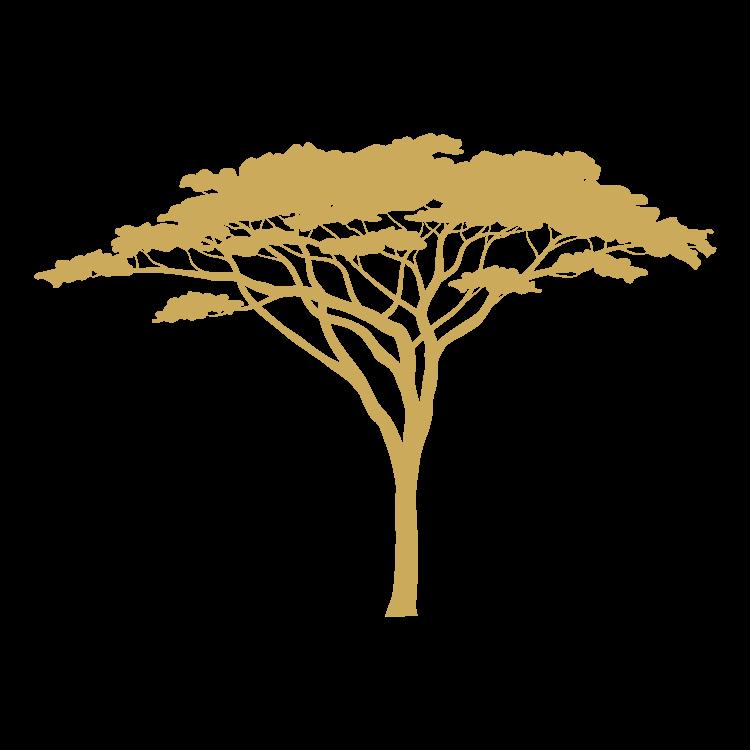 Mangweni Safari Lodge Tree
